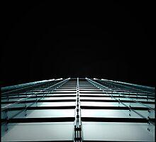look up! by rita vita finzi