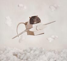 Ratty Plane by Catherine Holmes