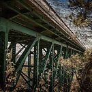 Cut River Bridge by Theodore Black