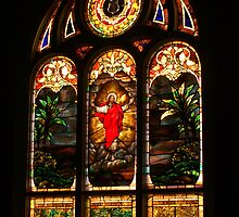 Stained Glass by Linda Yates