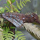Metal Bird by UrsulaDee