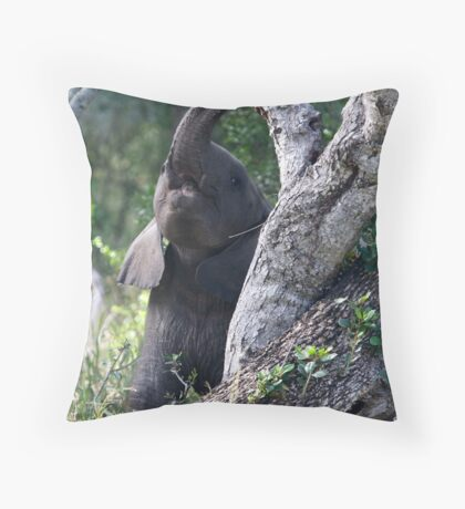 Baby Elephant Peekaboo Throw Pillow