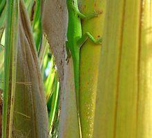 Tree Lizard by Gene  Tewksbury
