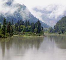 Wilderness River by Jann Ashworth