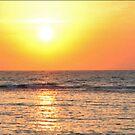 Tropical Sunset by Gene  Tewksbury