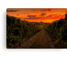 Peller Estates Winery Canvas Print