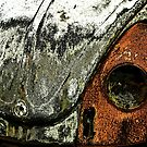 Sad Beetle by missmoneypenny