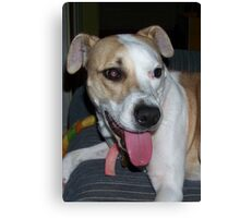 one of jerzy's happy faces Canvas Print