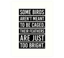 Bird Feathers Quote Art Print