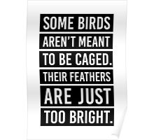 Bird Feathers Quote Poster