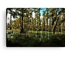Swamp Shadows Canvas Print