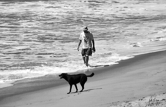 DOG DAY AT THE BEACH by Paul Quixote Alleyne