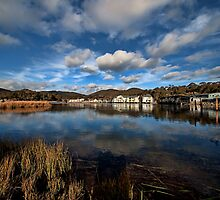 Lake Crackenback :: Vertorama by Sam Ilic