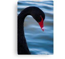 Swan 3 Canvas Print