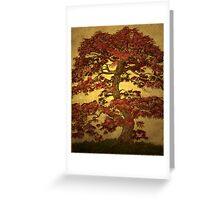 Red Maple Bonsai Greeting Card