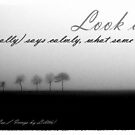 Look at me... by -Lilith-
