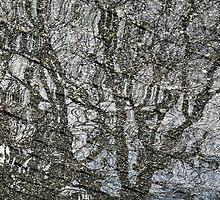 Tree by awefaul