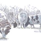 Sheep with patches of brown wool by MikeJory
