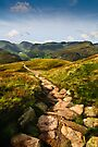 A View of Brothers Water from Place Fell by David Lewins