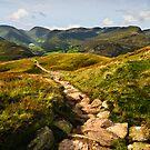 Cumbrian Views by David Lewins