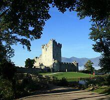 Ross Castle by John Quinn