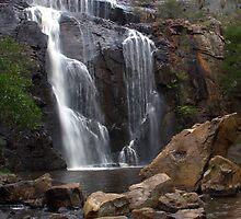 McKenzie Falls by Evan Steele