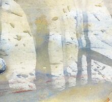 watercolour limpet by yvesrossetti