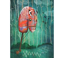 The Hobby Horse Photographic Print