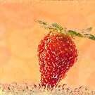 More Bubbly Fruit by Sarah Moore
