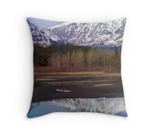 Sheer picturesque Throw Pillow