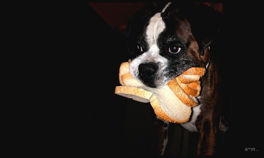 ~Bread Thief~ by a~m .