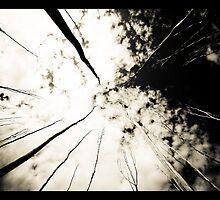 Dendritic by halloosin8