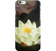Parceval House garden Yorkshire iPhone Case/Skin