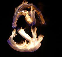 Fire Twirling by Melanie Wilkinson