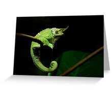 ~C is for Cranky Chameleon~ Greeting Card