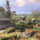 Brimham Rocks by Graham Clark