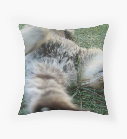 Scuffle with the Paparazzi Throw Pillow