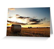 Make hay while the sun shines Greeting Card