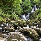 Torc Waterfall, Killarney National Park, Ireland by Bob Culshaw