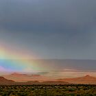 Rain in Valley of the Gods, Utah by Erwin G. Kotzab
