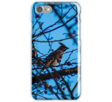 A waxwing  iPhone Case/Skin