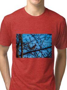 A waxwing  Tri-blend T-Shirt