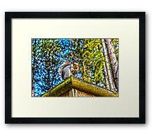 Steve the squirrel   Framed Print