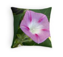 Morning Glory in The Field Throw Pillow
