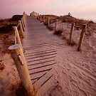 Beach path by SHOI Images