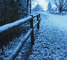 Frosty Walk by Indelibly-Yours