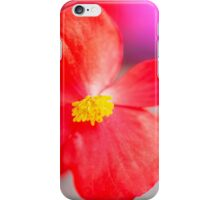 Humble Little Begonia iPhone Case/Skin