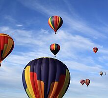 nine hot air balloons by Jamie Roach
