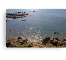 See With Diamonds in Dorset Canvas Print