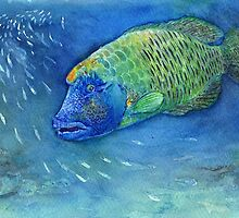 Sad Fish by MiMiDesigns
